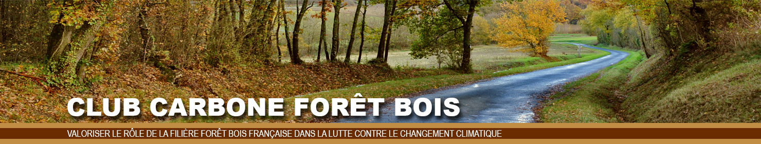 Ban-Car-Fo-Bois-v2